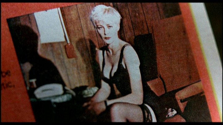 pamela gidley photos